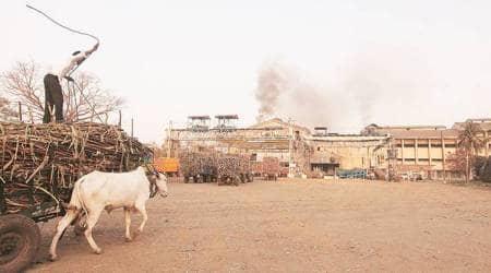 Maharashtra sugar mills
