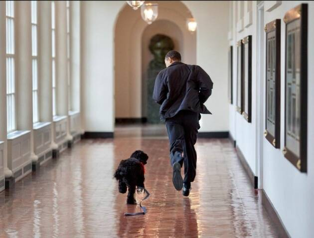 barack obama, michelle obama, barack obama michelle obama, barack obama pet dog, michelle obama pet dog, indian express, indian express news