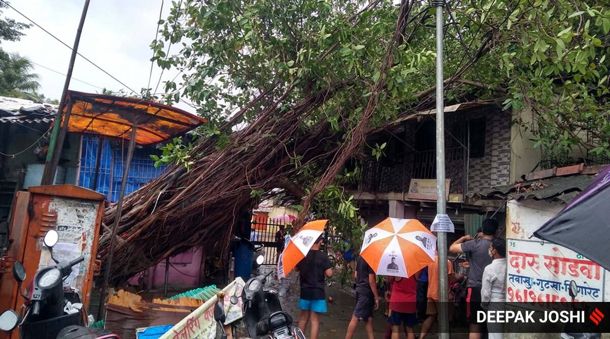 Cyclone Tauktae: Minor damages reported from hilly areas of Pune district
