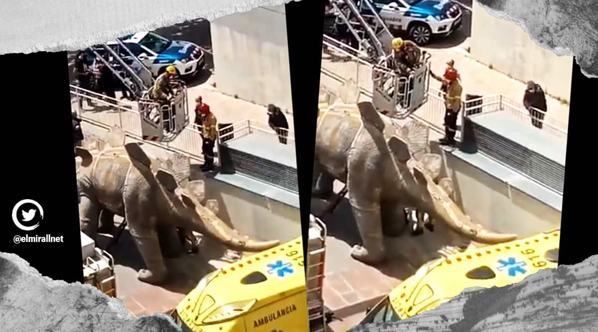 Spain, dead body inside dinosaur statue, Deadman inside dinosaur statue, Missing man found dead inside dinosaur statue, Missing man inside dinosaur statue, Bizarre news, Indian Express news