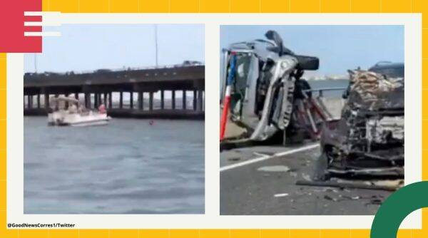 Maryland bridge accident, man saves toddler, good Samaritan saves toddler, good Samaritan jumps to save toddler viral video, twitter reactions, trending, indian express, indian express news