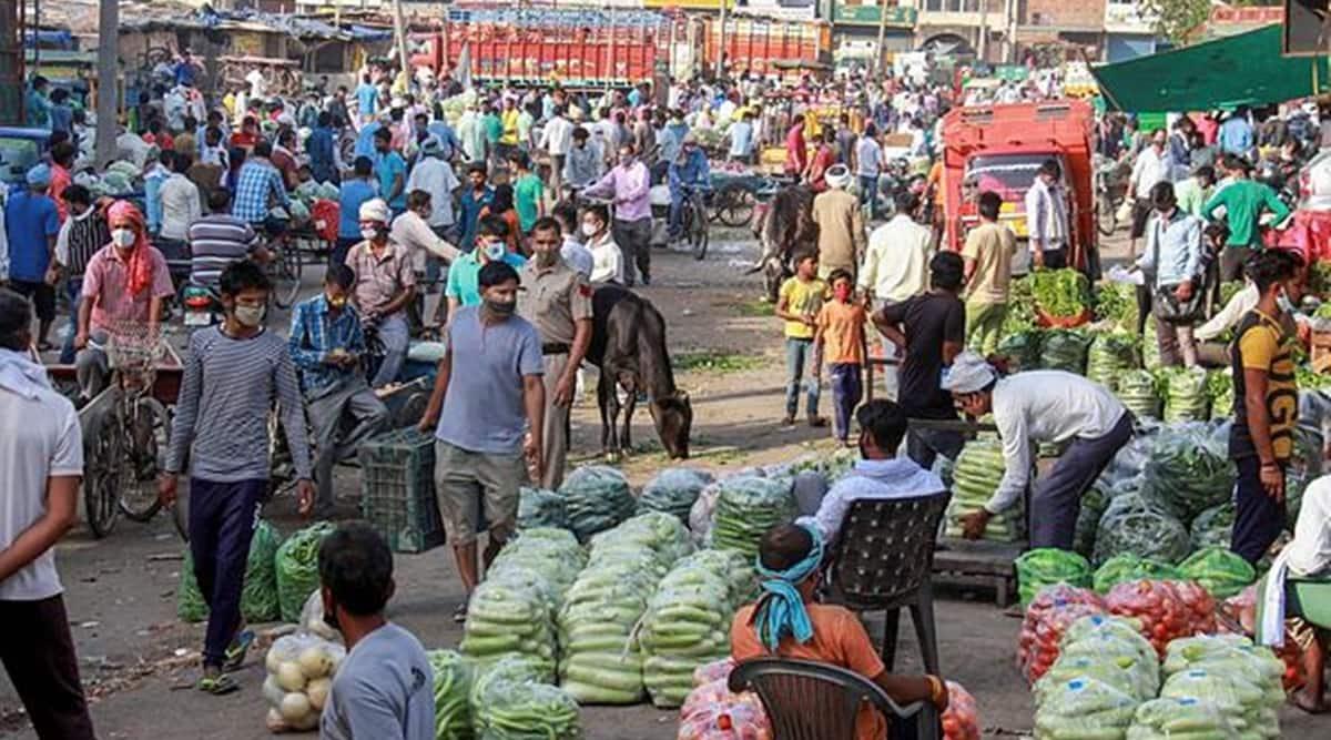 Haryana covid lockdown