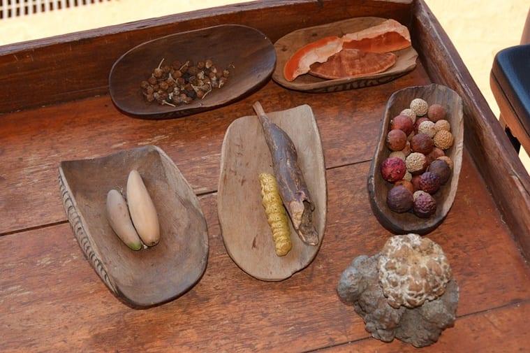 aboriginal australian food