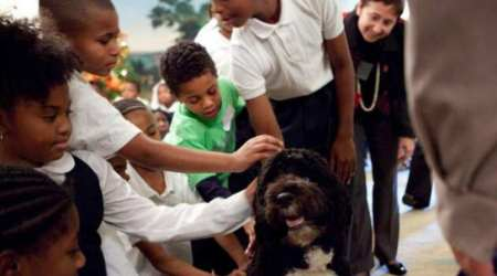 barack obama, michelle obama, barack obama michelle obama, barack obama pet dog, michelle obama pet dog, indian express, indian express news