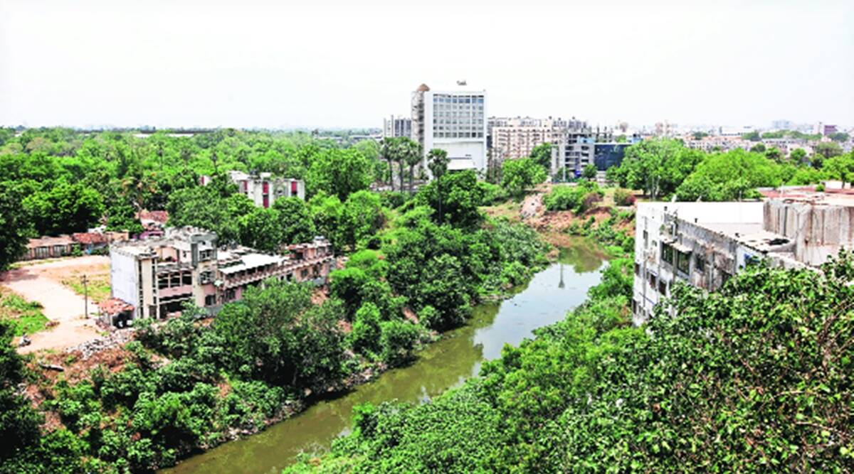 Gujarat: Vishwamitri River Project Gets Green Tribunal'S Go-Ahead | Cities  News,The Indian Express