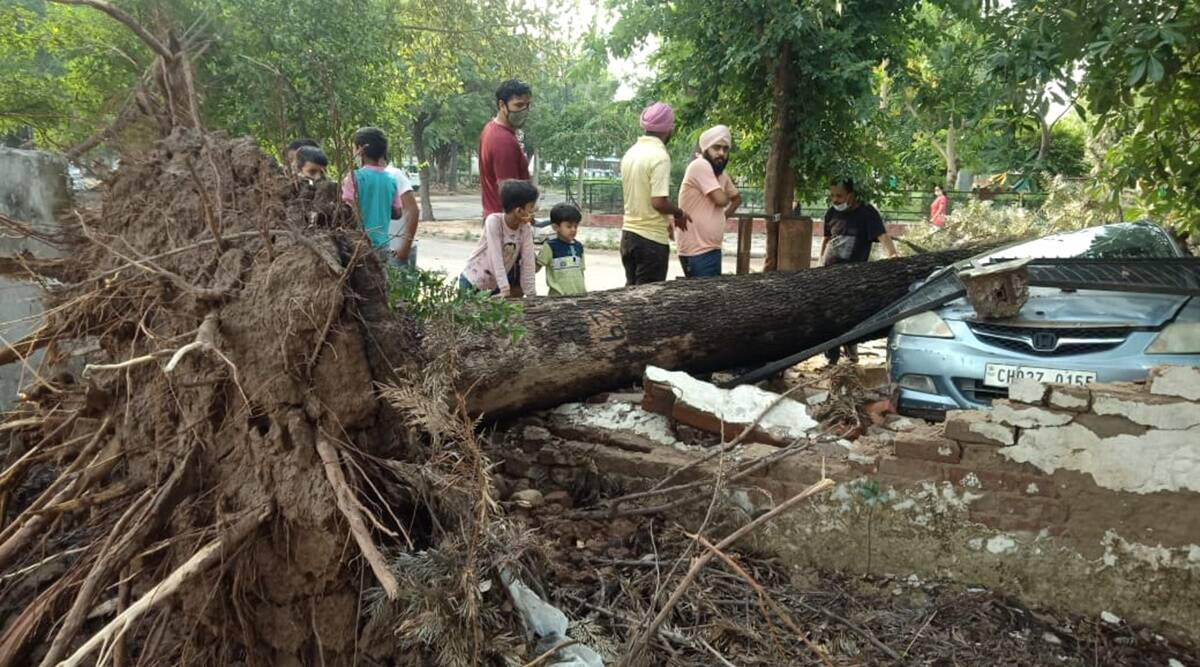 Storm plunges Mohali into darkness; PSPCl exposed, say former councillors