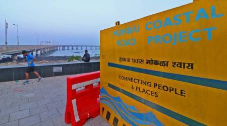Mumbai: BMC begins tree felling for coastal road at Tata Garden