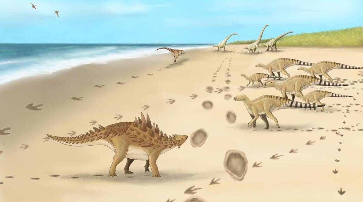 Footprints of last dinasours to walk on UK soil discovered in Kent