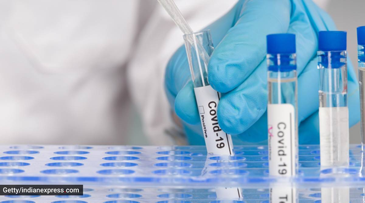 when is antibody testing done, antibodies, what are antibodies, Covid-19 and immune system, indian express news