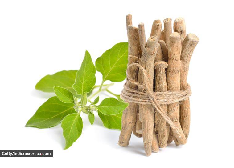 immunity booster, how to boost immunity naturally, essential herbal ingredients, herbal ingredients to strengthen immunity, health and immunity, natural ways to improve immunity, indian express news