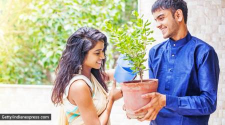 sustainable living, environmental consciousness, Gen Z, Gen Z on Tinder, Gen Z on environmentalism, Gen Z on environment themes, Gen Z on plant-based living, indian express news