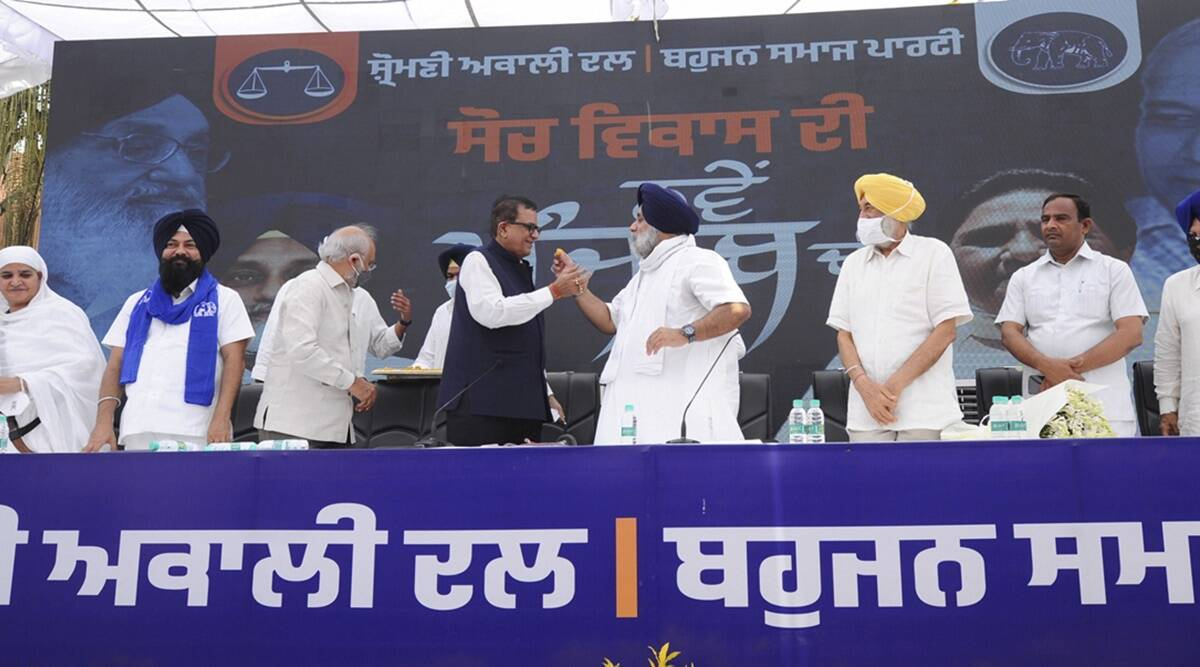 Punjab: In alliance with SAD, BSP set to make it life tough for political rivals in Doaba
