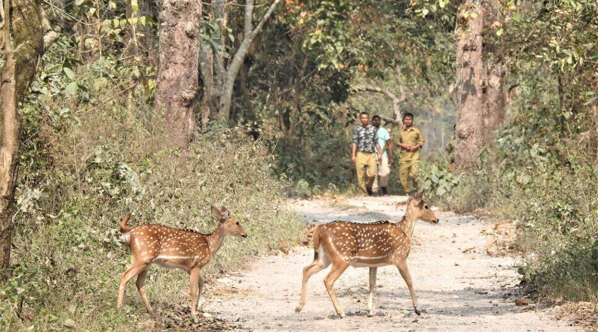 02 new national parks in Assam