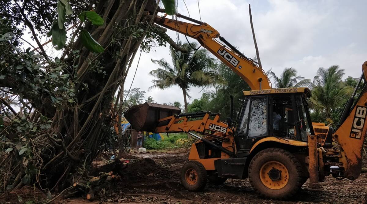 World Environment Day: Activists to protest against proposed tree felling by transportation plan