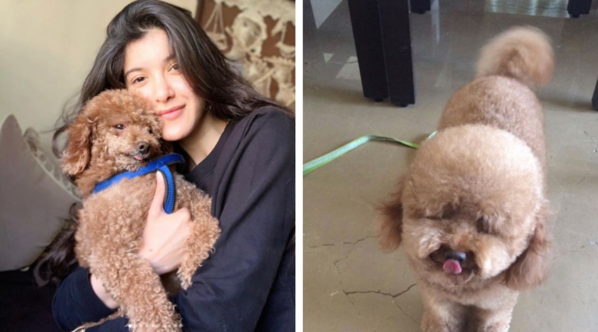 Shanaya Kapoor says goodbye to Scooby in an emotional message: Calm down calmly, my angel
