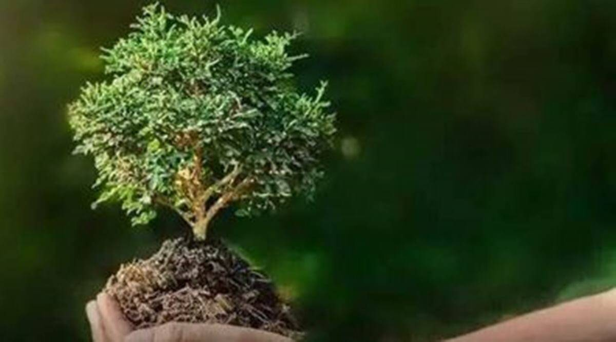 World Environment Day, World Environment Day 2021, World Environment Day theme, sustainable living practices, eco-friendly things for everyday use,indianexpress, indianexpress.com