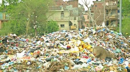 Garbage piles up in several parts of Punjab as sweepers protest, demand regularisation