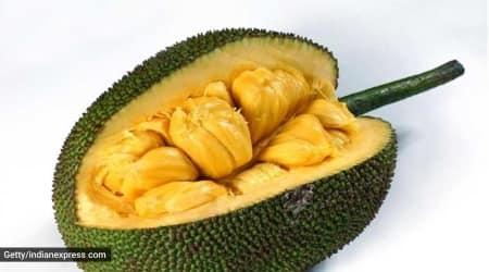 jackfruit flour