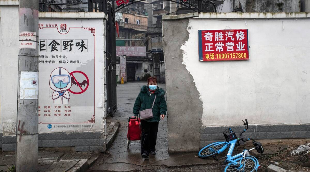 China's 'Bat Woman,' at the center of a pandemic storm, speaks out