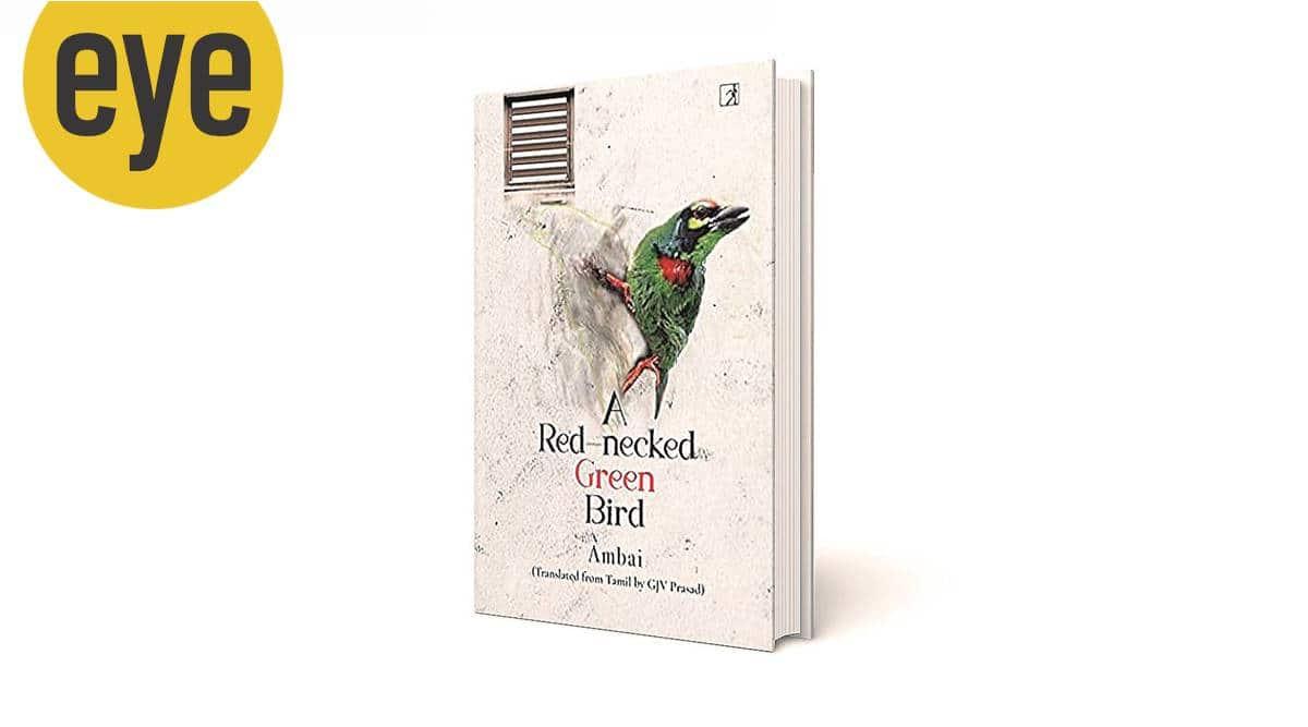 A Red-necked Green Bird