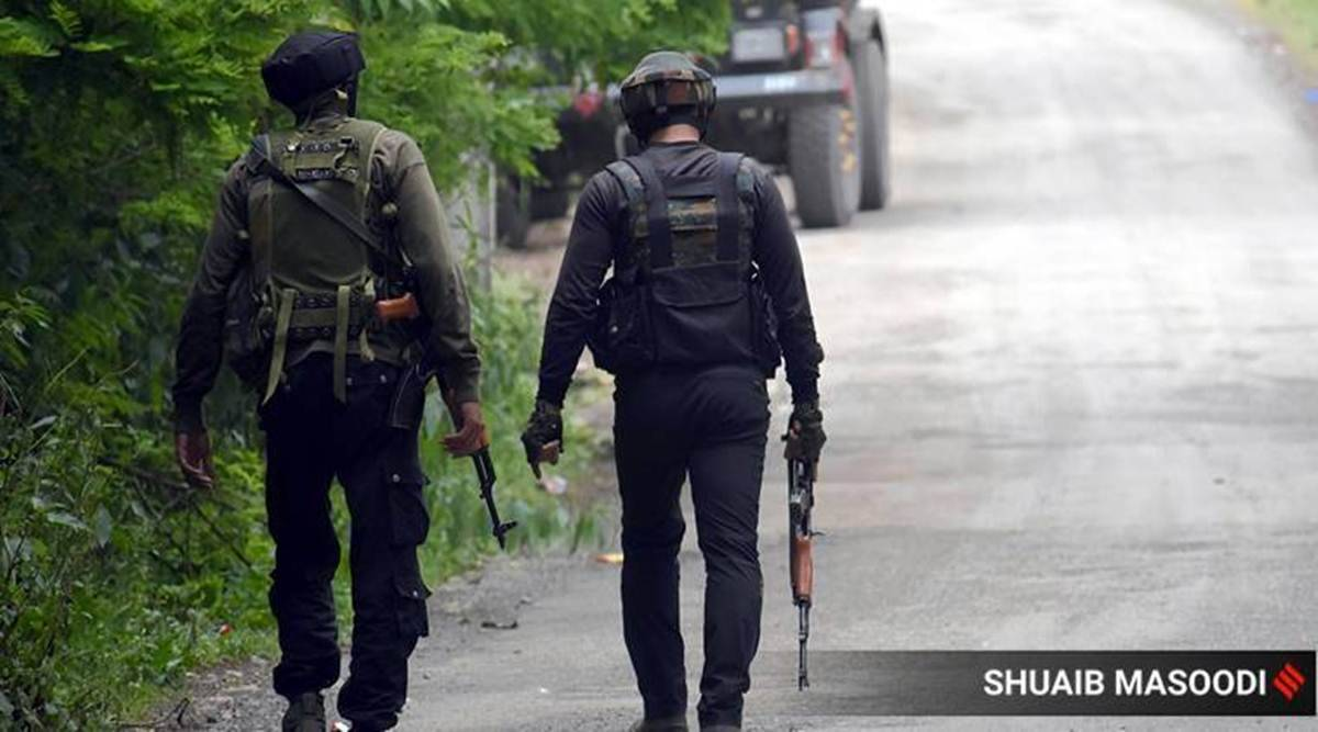 Two militants killed in encounter with security forces in J-K's Pulwama