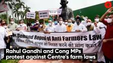 Rahul Gandhi and Cong MPs protest against Centre's farm laws
