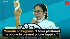 """Pegasus Row 