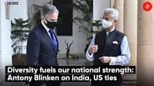 Diversity fuels our national strength: Antony Blinken on India, US ties