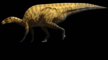 Portellsaurus sosbaynati.