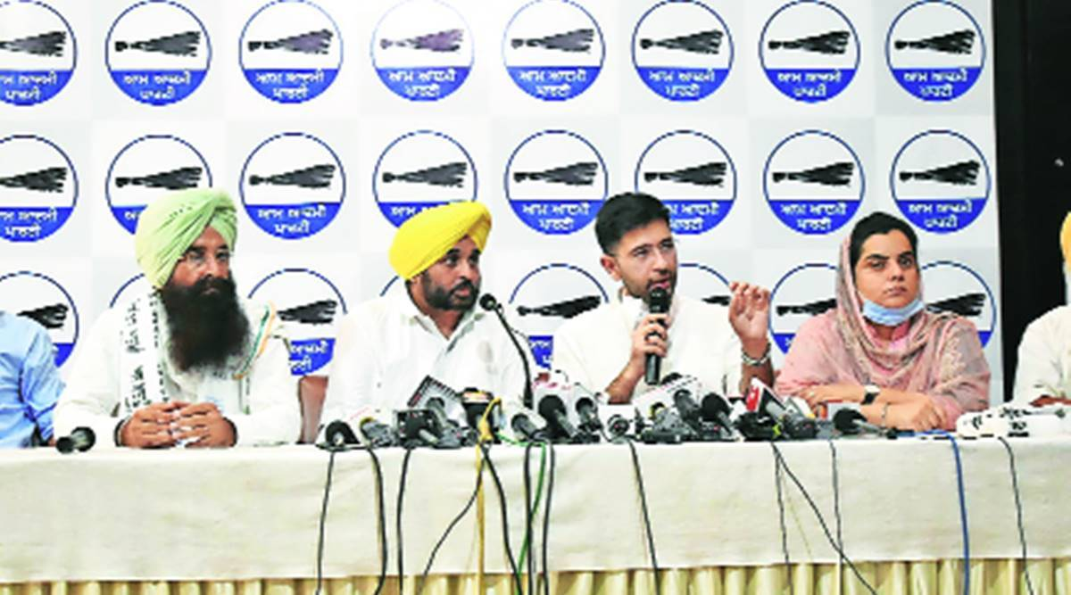 No alliance, AAP to contest all 117 seats in Punjab