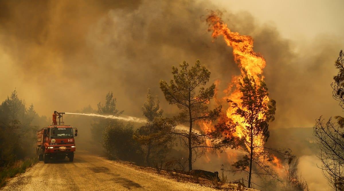 turkey, turkey wildfires, turkey forest fire, turkey is burning, turkey wildfire videos, viral videos, indian express