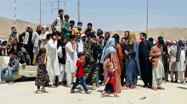 sharia law, sharia law in afghan, taliban sharia law, what is sharia law in afghan, what is sharia law, sharia law rules, sharia law explained, sharia law details, sharia law afghanistan, afghanistan sharia law, taliban afghan news