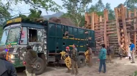 Jumbo 'Rivaldo' adapting well to its new forest home, says TN govt