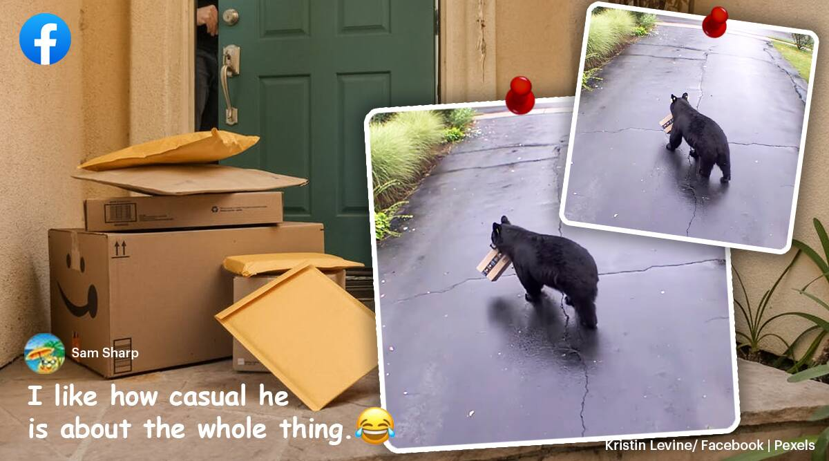 bear steals amazon package, bear steals online delivery package, bear steals toilet paper, viral news, odd news, funny news, indian express