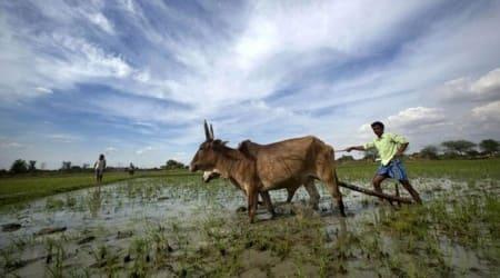Blockchain, Maharashtra State Warehousing Corporation, Maharashtra agriculture, Maharashtra news, pune news, pune news update