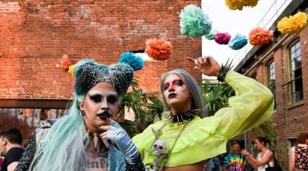 Bushwig, drag festival, LGBTQA community