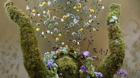 Chelsea Flower Show, Chelsea Flower Show pictures, Chelsea Flower Show pandemic