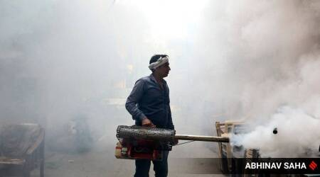 Mohali records 103 new cases of dengue