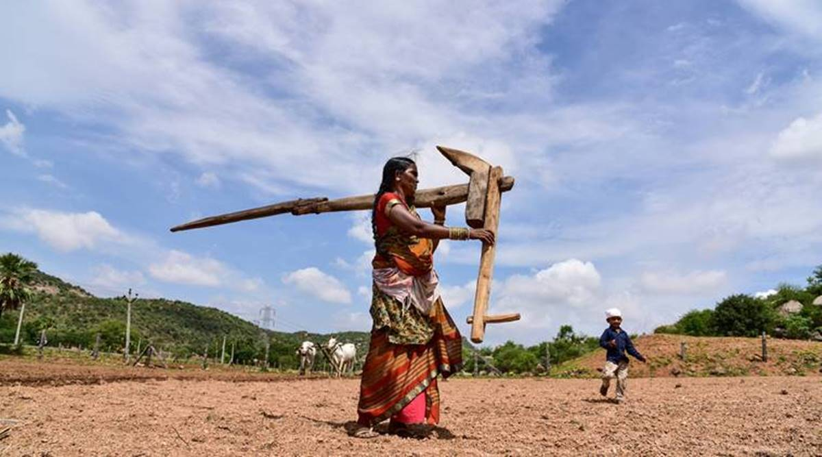With state support, idea of FRP payment in installments gains traction, but farmers oppose it