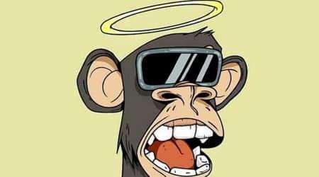 bored ape