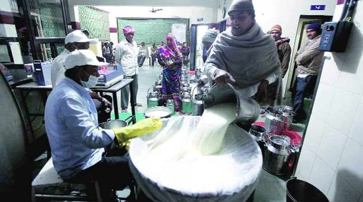 Banas dairy, varanasi, Modi, indian express, indian express news, current affairs, ahmedabad news