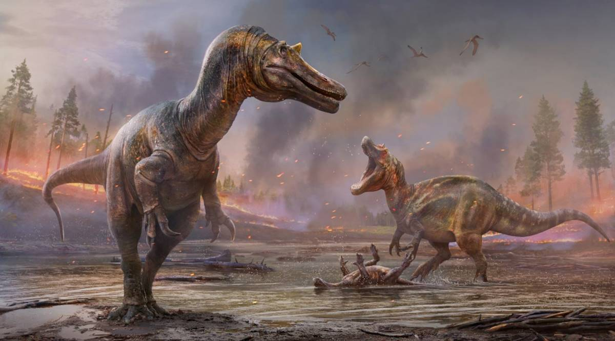 new-spinosaurids