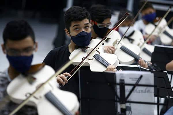 pvc violin