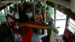 woman falls off from bus