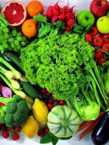 Health benefits of a plant-based diet