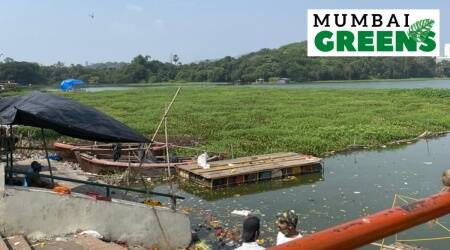 mumbai greens, mumbai powai garden, powai lake