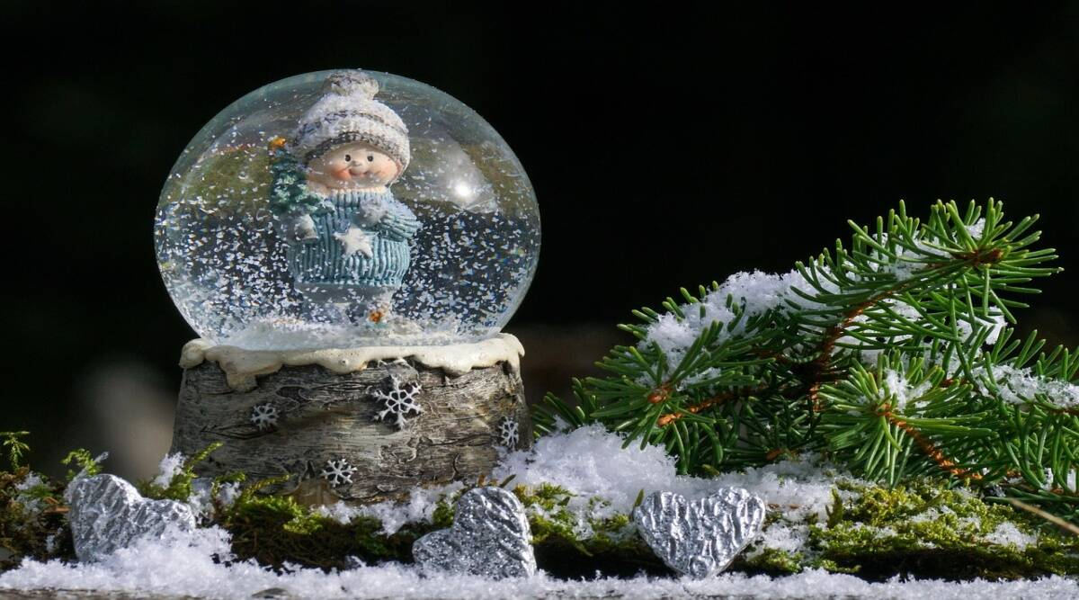 neighbours donate slowglobes, neighbours donate slowglobes Thornton Colorado, neighbours donate snowglobes to girl with williams syndrome, indian express, indian express news, trending, trending news