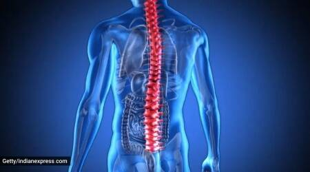 spinal fungal infection